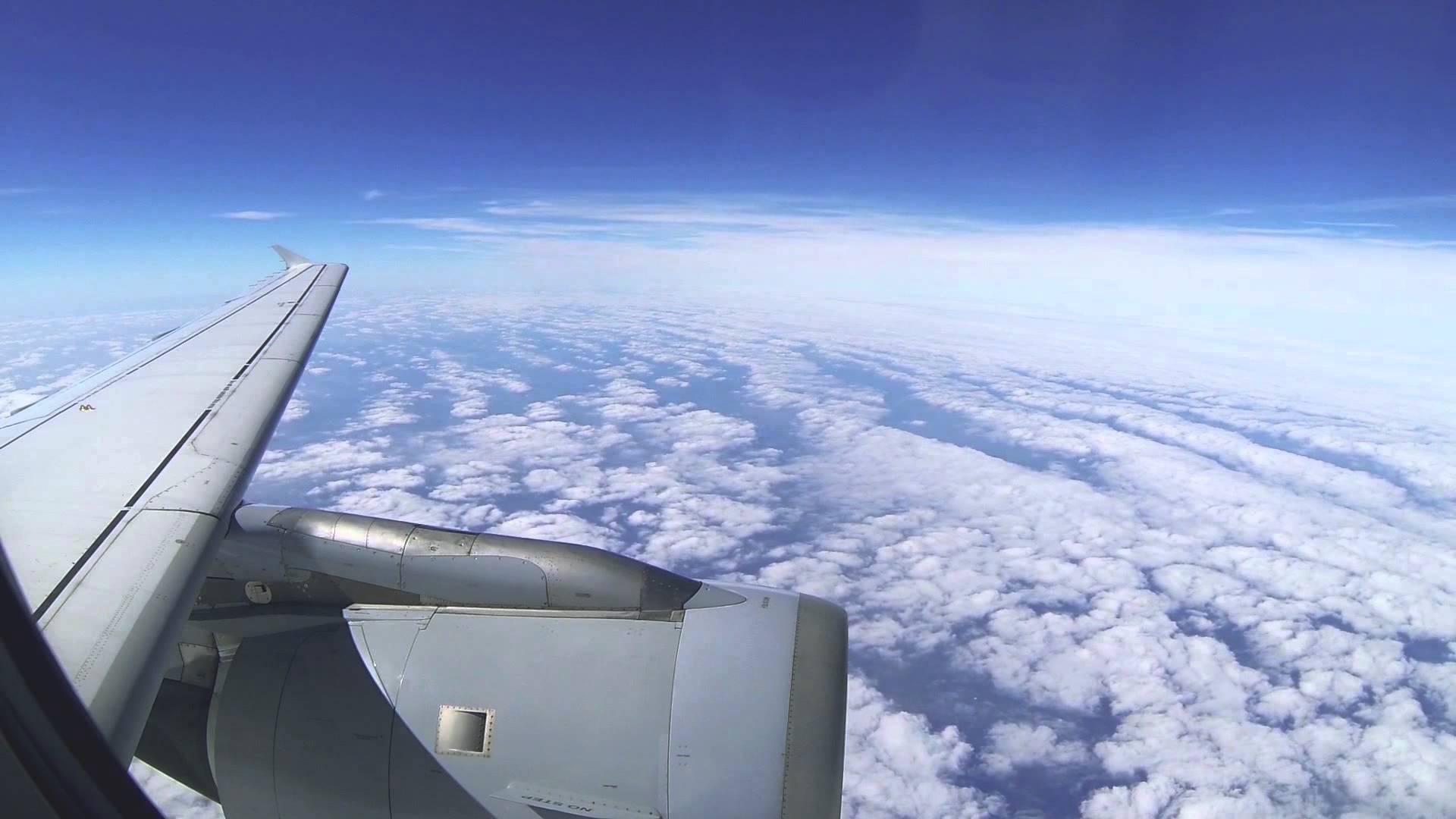 Frankfurt – Hamburg Lufthansa A319 (full flight)