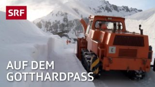 Leben am Gotthard – Ein Jahr an der Passstrasse | Doku | SRF DOK